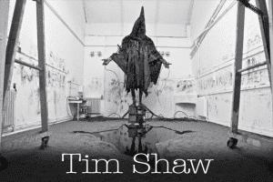 tim-shaw-s-300x200