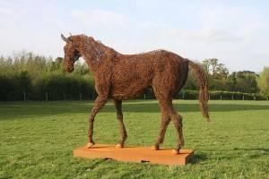 rupert-till-horse